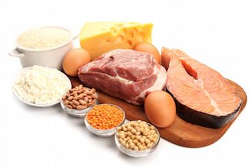 wat doen eiwitten